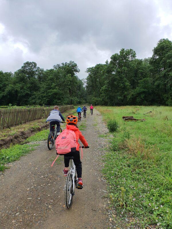 excursie cu bicicleta scoala altfel